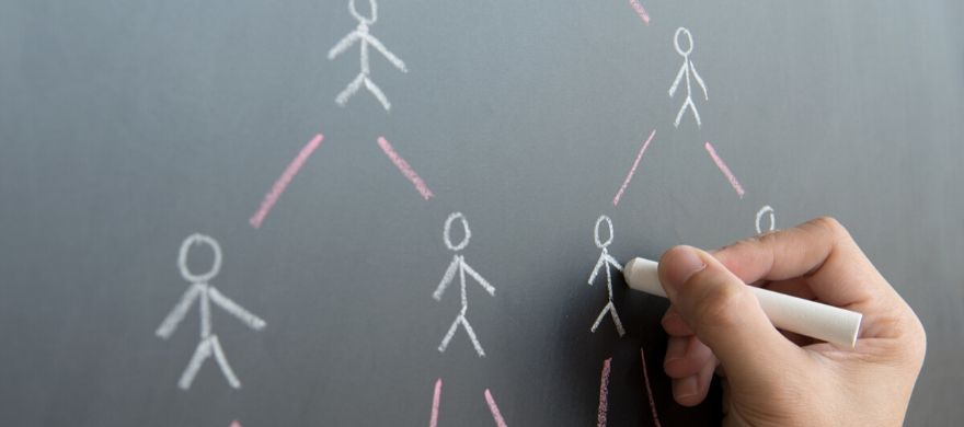rede-multiplicadores-o-que-e-importancia
