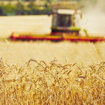 Ex-ministro Roberto Rodrigues diz que Brasil precisa pensar grande na Agronomia