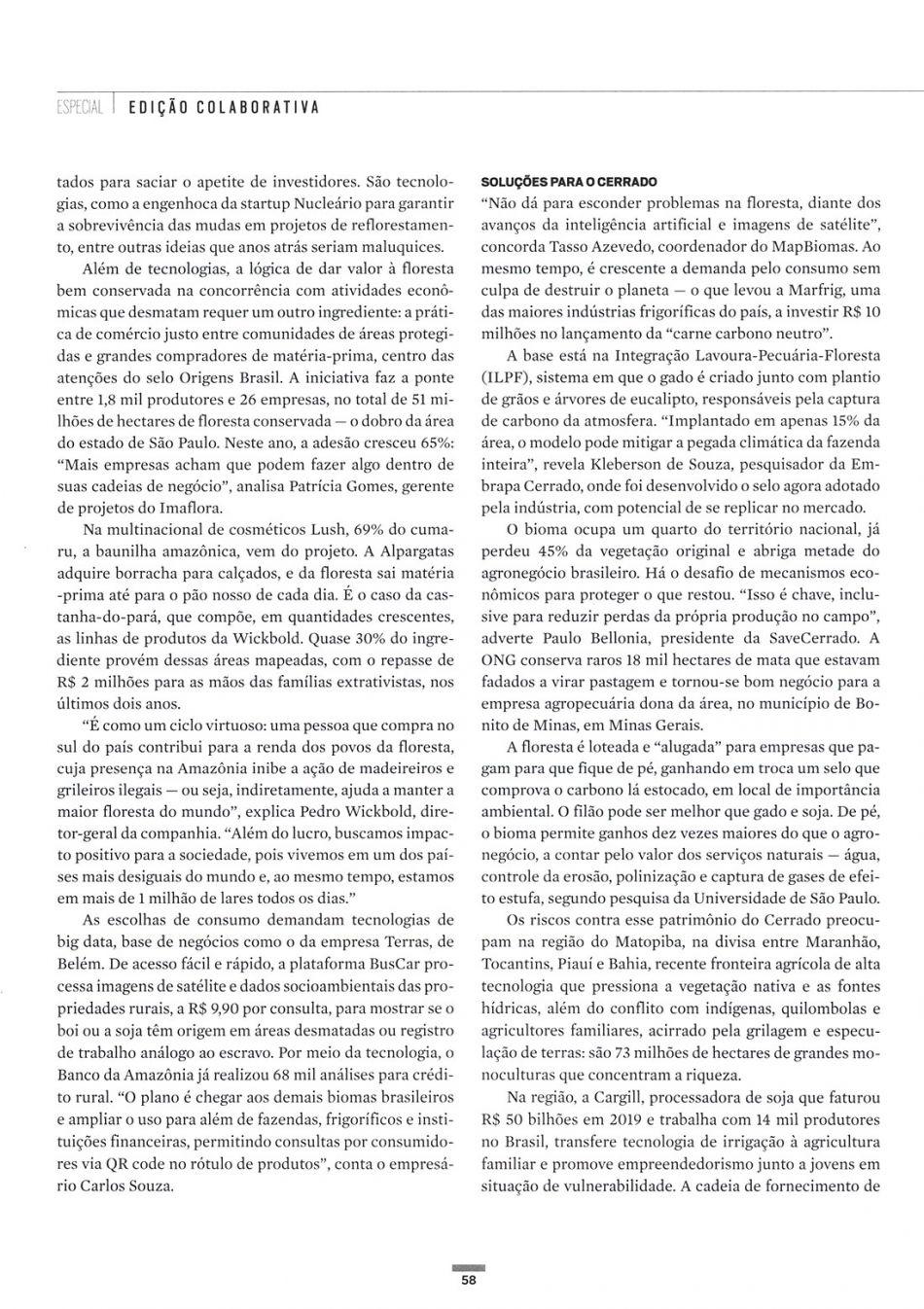 Biomas de pé = empresas saudáveis - Época Negócios