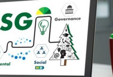 Como o ESG e uma Comunicação Integrada podem criar valor às marcas