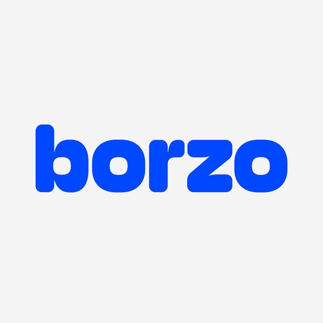 Saiba mais sobre o cliente Borzo