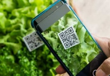 Marketing de Influência para a Indústria Alimentícia. Funciona?